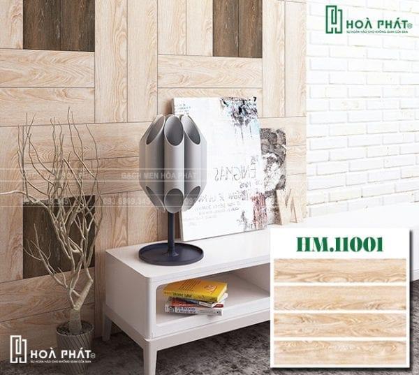HM-11001