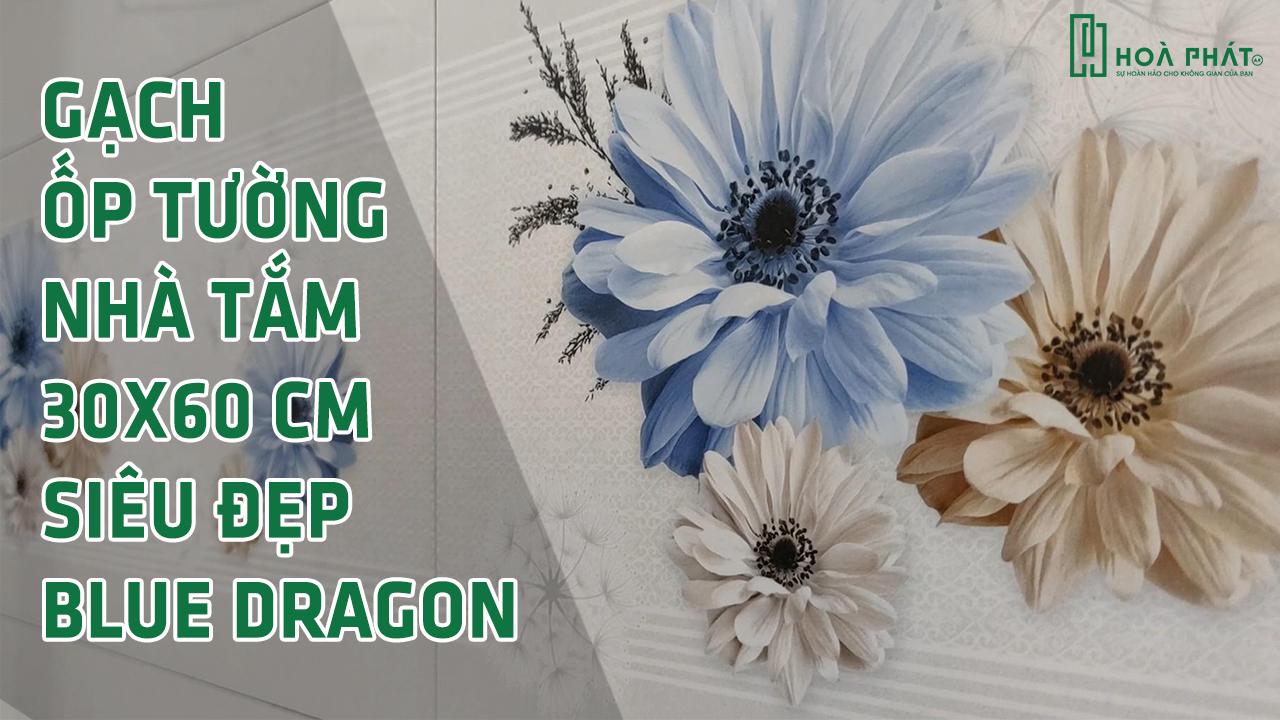 gach-op-tuong-sieu-dep-blue-dragon.jpg